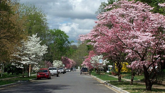 Fayetteville_street